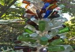 Bud Quigleys Bottles